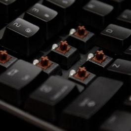 Switchs de um teclado.