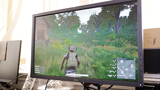 Review: Monitor BenQ Zowie XL2430
